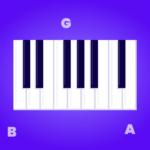 Piano instrument anatomy
