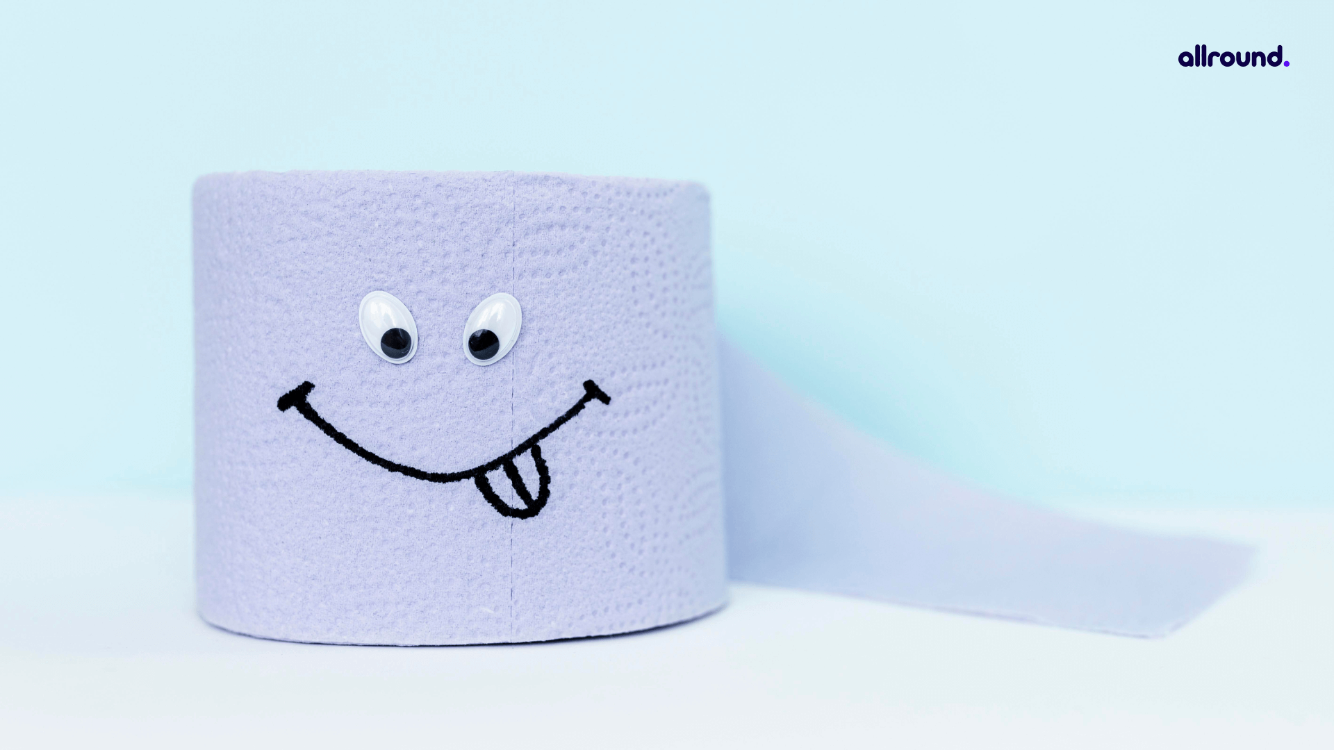 TOILET PAPER ROLLS craft ideas