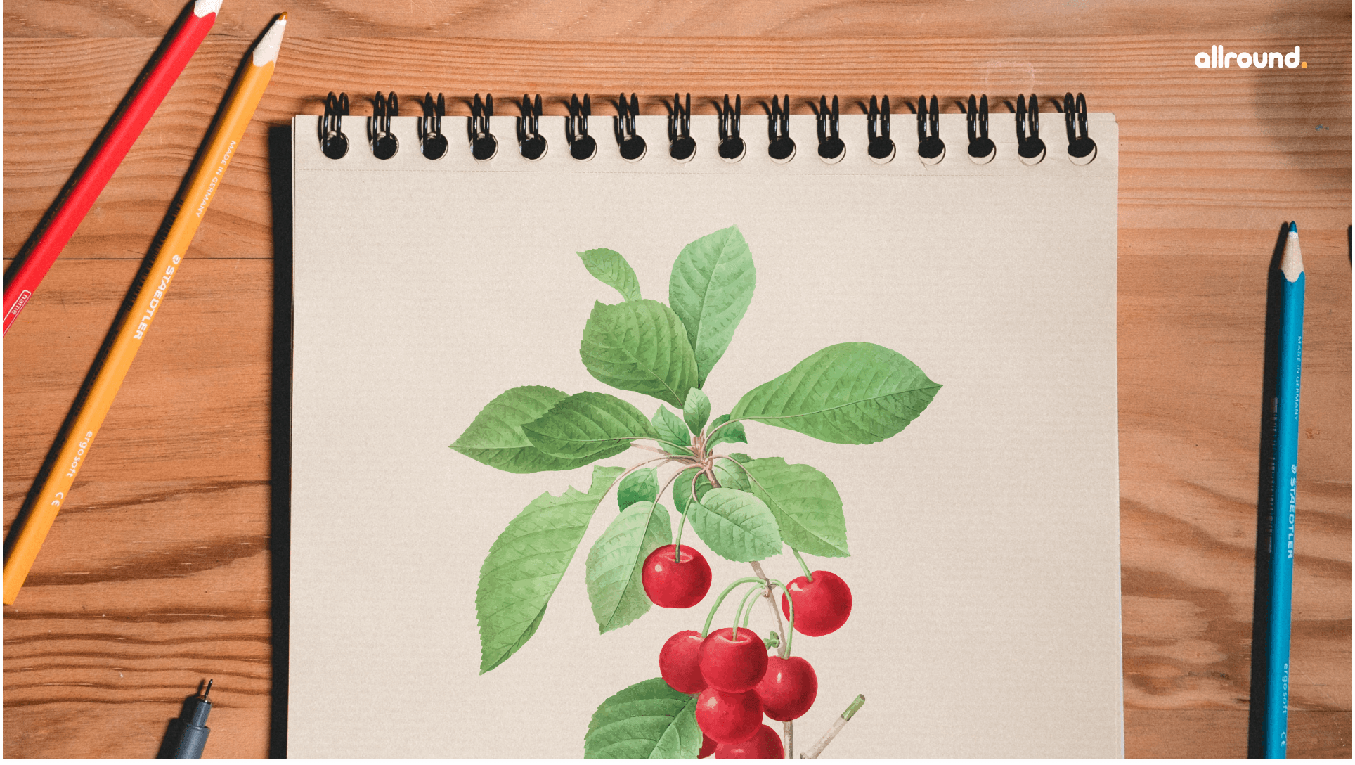 how to draw cherry